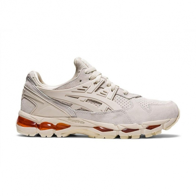 Asics Gel-Kayano Trainer 21 1201A067-201