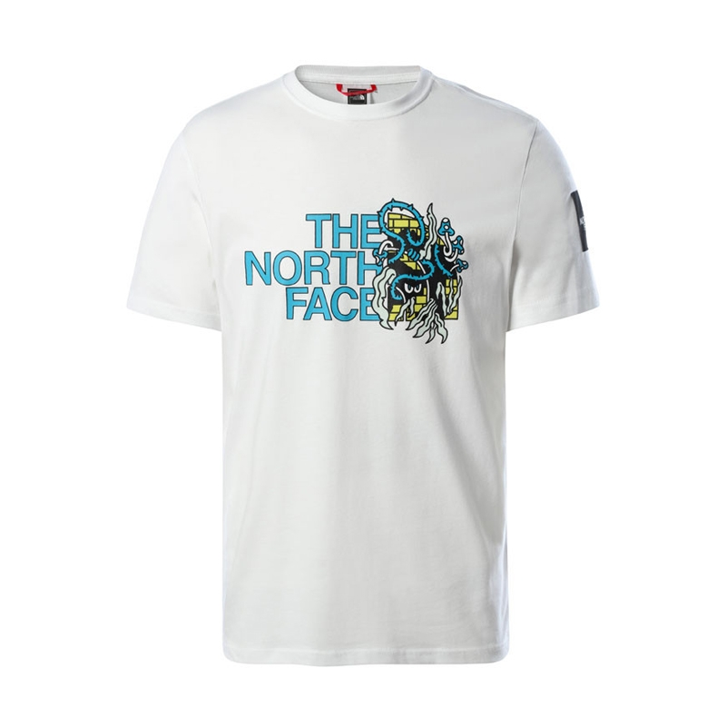 The North Face M Black Box Graphic Tee NF0A557LFN4